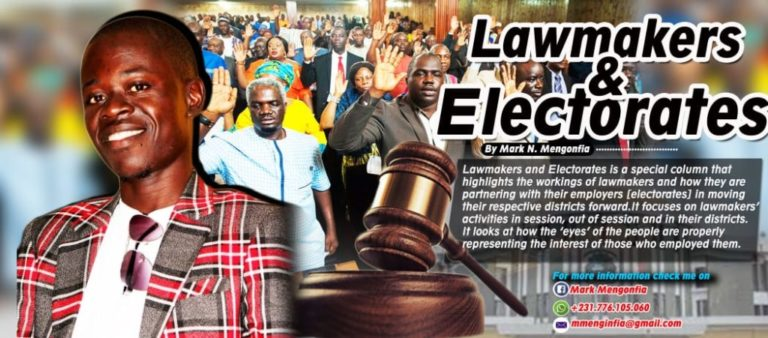 Dilemma of Women Representative In Liberia: What's the Hope? Has All Hopes Gone or Can It Be Changed?